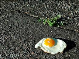 egg on sidewalk